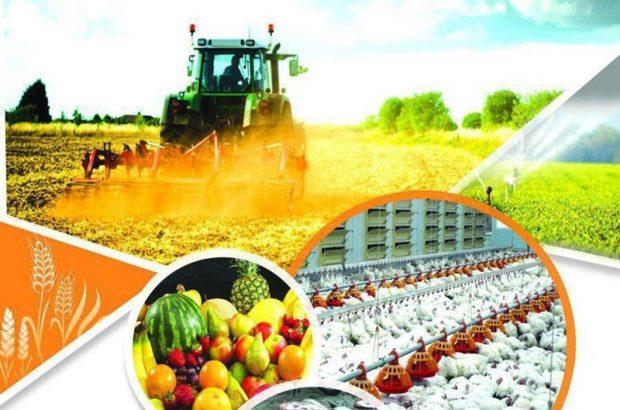 برگزاری گردهمایی مدیران بخش کشاورزی شش استان جنوبی کشور