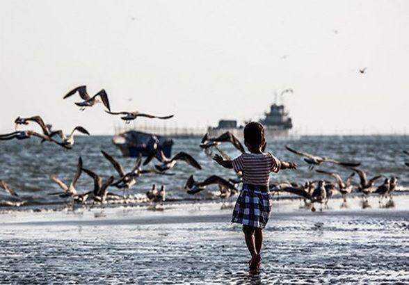 آرامش بر وضعیت جوی و دریایی هرمزگان حکمفرما است