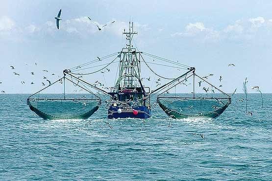 نیروی دریایی سپاه هفت کشتی صید ترال را توقیف کرد