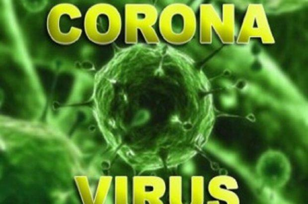 مبتلایان به ویروس کرونا به ۴۳ نفر رسید/۸ نفر جان باختند