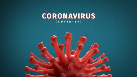 ویروس کرونا کدام اندام های بدن را درگیر میکند؟